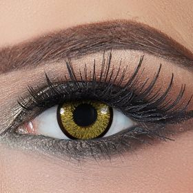 Bella - Contact Lenses - Bella Highlight Gold