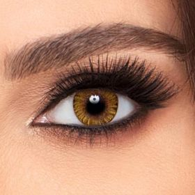 FreshLook Plano One Day Eye Lenses - Pure Hazel - (Daily)