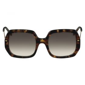 Etro Purple Havana Sunglasses