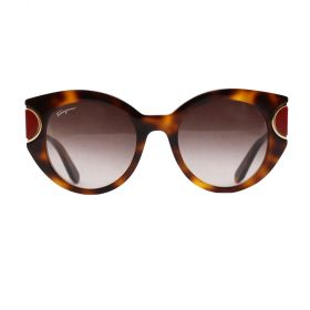 Salvatore Ferragamo - Tortoise & Red Sunglasses